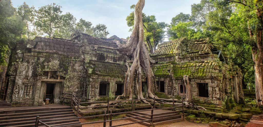 Angkor Ta Prohm Temple of Angkor Thom in Cambodia